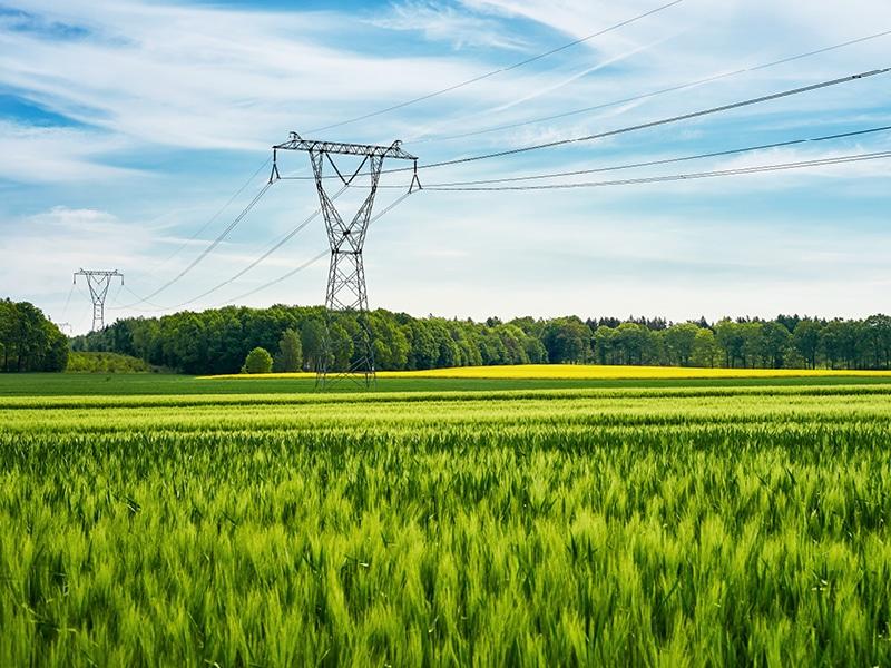 Ökostrom: grün und klimabewusst.